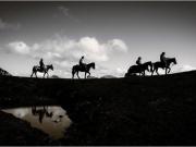 apartamentos-rurales-asturias-tierradelagua-caballos-04