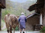 apartamentos-rurales-asturias-tierradelagua-parquederedes-02