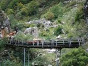 apartamentos-rurales-asturias-tierradelagua-redes-30